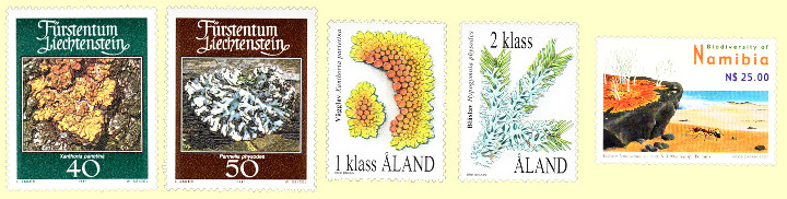 Stamps in this article may be shown larger or smaller than actual.